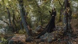 Lady raven / ***