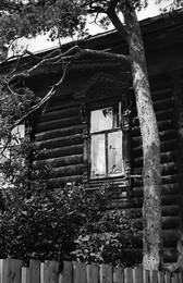 Птичка / 1969г., Кострома