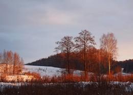 Под лучами низкого зимнего солнца / Ясная поляна. Калинов луг в начале зимы