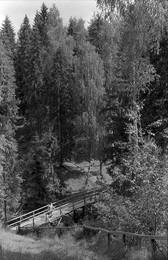 Щелыково / 1962г.
