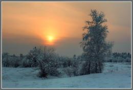Рождение нового дня / Стоят обнявшись три березки, Сова на дереве сидит. И солнце бледным, красным глазом, На землю сонно так глядит...©