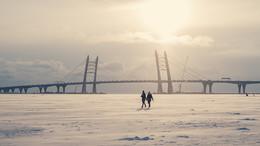 Зимняя прогулка по водам Финского залива / Февраль, 2017, Финский залив и новый вантовый мост западного скоростного диаметра