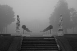 Туманное утро... / Осенее туманное утро в Екатерининском парке
