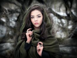 Зимний портрет...3.. / ***
