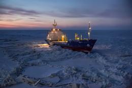 Утро в Арктике / Теплоход зажат льдами в Карском море.