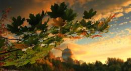 Однажды осенью / С отражением