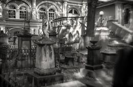 В Донском монастыре / Донской монастырь, г. Москва