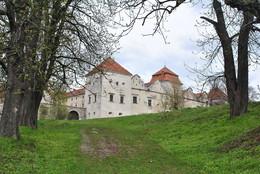 Свіржський замок / Весна