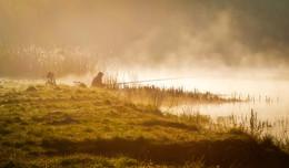 На туманном берегу / Калининградская область, пос. Космодемьянского