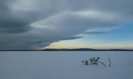 Элементарная частица / Северный Урал, озеро Экипурымтур, на дальнем плане - священная гора манси Ялпингнер