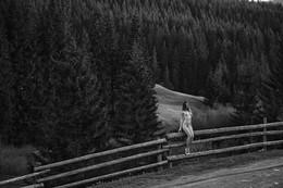 / Величие карпатских лесов и маленькая богиня на заборе ;)