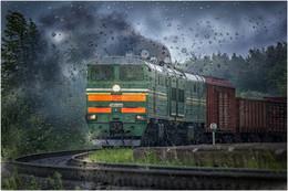 В дождь... / Nikon D5200