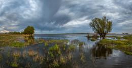Весенняя непогода. / Лиманский район, Астраханская область.  Конец апреля, 2017 года.