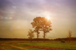 S O U L / Каждому под силу найти свою дорогу. Побольше мечтайте и слушайте свое сердце!!!