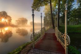 /Утро в парке.../ / Подмосковье. г, Чехов