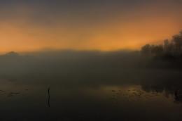 Без названия / ночь, туман