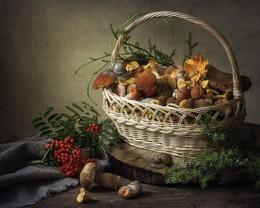 Грибная пора / летний натюрморт с грибами