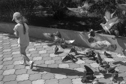 девочка и голуби / ***