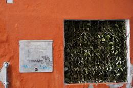 обертон / стены видят все. о чем молчат стены