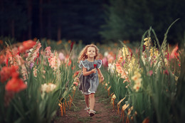 Амелия / Амелия в поле цветов