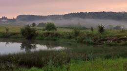 Утром на пруду / Утром на пруду