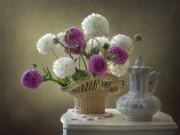 Натюрморт с георгинами / цветочный натюрморт