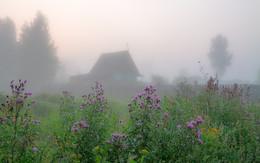 В тумане / ***
