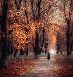 """Сентябрьская дева / """"Осень жизни, как и осень года, надо, не скорбя, благословить...""""  Э. Рязанов  http://www.youtube.com/watch?v=PdQVQBjziAY"""