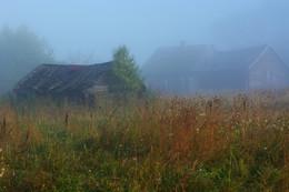 Утро в заброшенной деревне ... / Здесь бани уже не топят, траву уже не косят ...