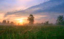 Утро ушедшего лета / ***