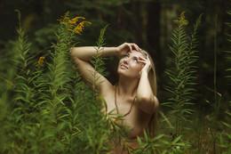 Nature / ...