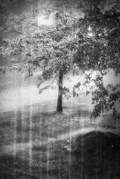 Осень постучалась в двери / Осень постучалась в двери