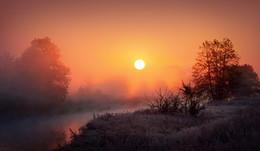 Осеннее утро / Холодно, все покрыто инеем, но это ненадолго...