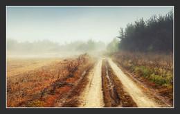Туманная дорога / ***