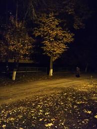 Старуха / вышла из мрака старуха, шла вдоль дороги осенней
