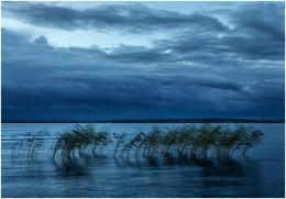 Море перед дождем / ***