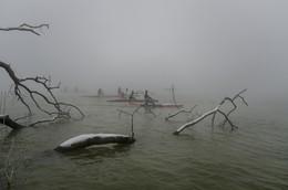 Гребцы в тумане (2) / Февральское утро в парке Солнечный Остров.