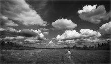 Прогулки под облаками / Начало мая...  Пишите, пожалуйста, комментарии. Мне важно ваше мнение.