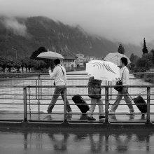 Под дождиком / Если облака переваливают и медленно стекают с гор, то все понимают: дождь зарядил надолго.  И город превращается в город зонтиков. Идут не пешеходы, идут зонтики. Сталкиваются, расходятся, плывут.