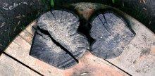 2_HEARTS: 2_LOVES / деревья и вправду имели такую форму