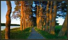 Дорожка в Мире / маленькая панорама