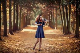 Autumn dreams / ***