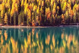 осенняя палитра озера Брайес... / Доломитовые Альпы...