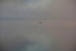 встреча в тумане / ***