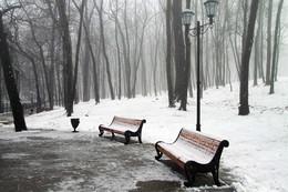 Зимняя грусть / Декабрьские туманы.