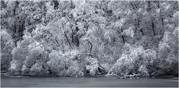 Вот и зима / ***