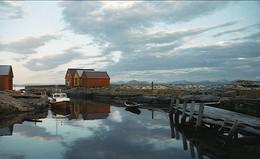утро / снимал в Норвегии. пленка AGFA 400asa