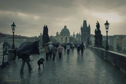 Не повезло с погодой ... / Прага. Карлов мост.