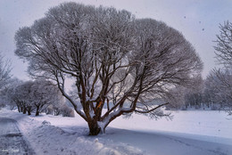 Зима. / ***