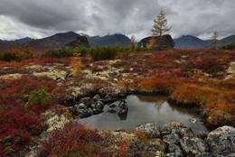 Осень на плато... / Озеро Джека Лондона Набор групп на июнь и сентябрь продолжается. Подробности на сайте http://phototourtravel.ru/
